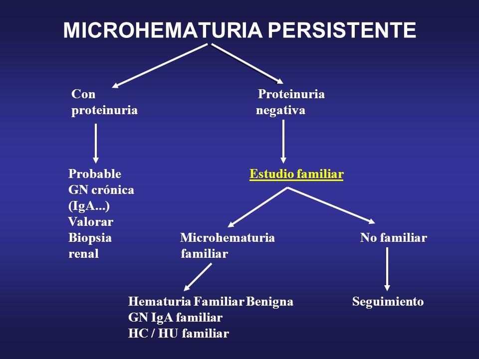 MICROHEMATURIA PERSISTENTE Con Proteinuria proteinuria negativa Probable Estudio familiar GN crónica (IgA...) Valorar Biopsia Microhematuria No famili