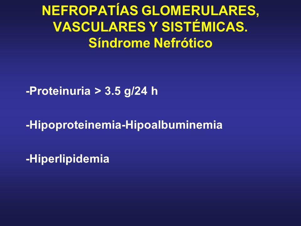 NEFROPATÍAS GLOMERULARES, VASCULARES Y SISTÉMICAS. Síndrome Nefrótico -Proteinuria > 3.5 g/24 h -Hipoproteinemia-Hipoalbuminemia -Hiperlipidemia