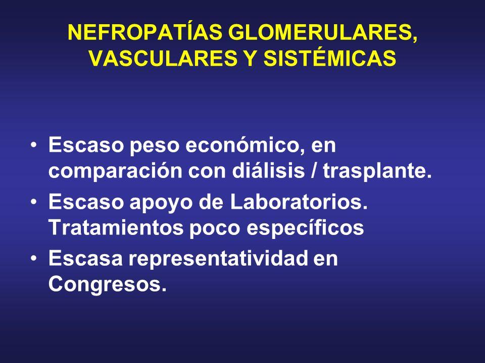 NEFROPATÍAS GLOMERULARES, VASCULARES Y SISTÉMICAS Escaso peso económico, en comparación con diálisis / trasplante. Escaso apoyo de Laboratorios. Trata