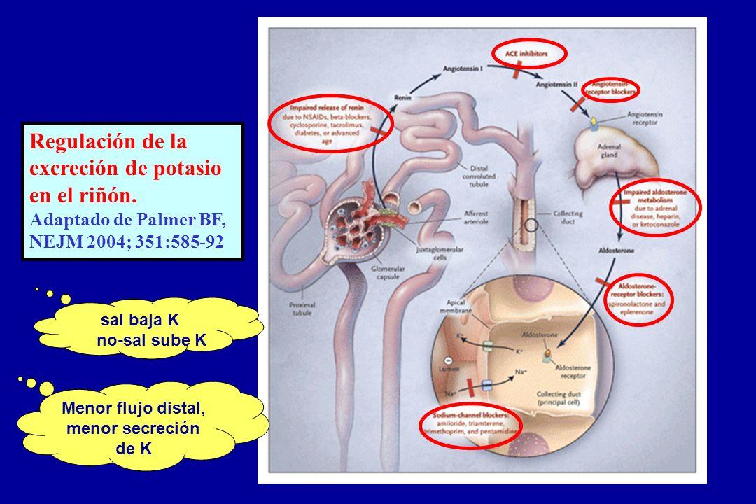 Regulación de la excreción de potasio en el riñón. Adaptado de Palmer BF, NEJM 2004; 351:585-92 sal baja K no-sal sube K Menor flujo distal, menor sec