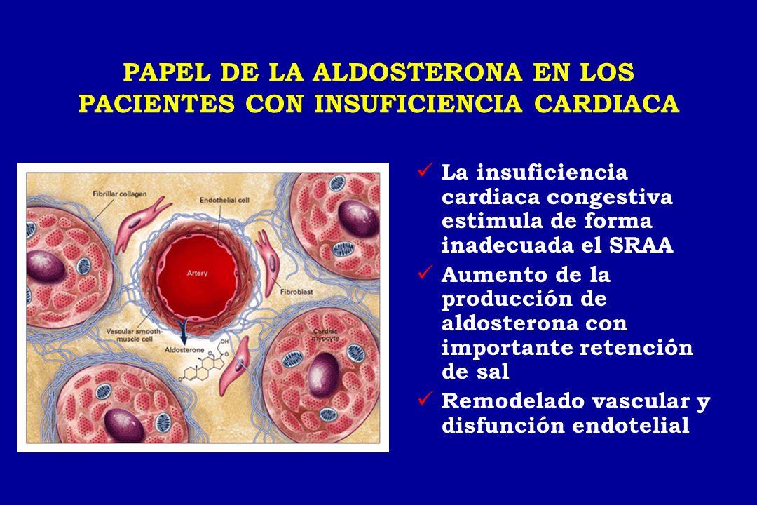 PAPEL DE LA ALDOSTERONA EN LOS PACIENTES CON INSUFICIENCIA CARDIACA La insuficiencia cardiaca congestiva estimula de forma inadecuada el SRAA Aumento