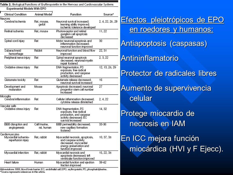 Efectos pleiotrópicos de EPO en roedores y humanos: Antiapoptosis (caspasas) Antininflamatorio Protector de radicales libres Aumento de supervivencia