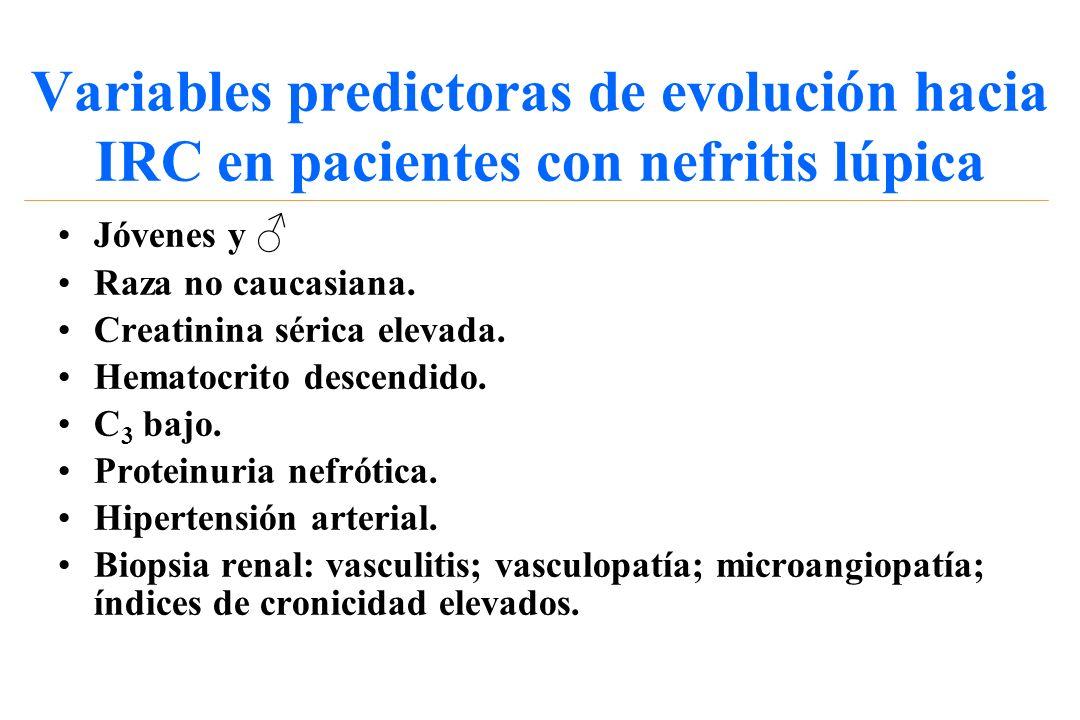 Variables predictoras de evolución hacia IRC en pacientes con nefritis lúpica Jóvenes y Raza no caucasiana. Creatinina sérica elevada. Hematocrito des