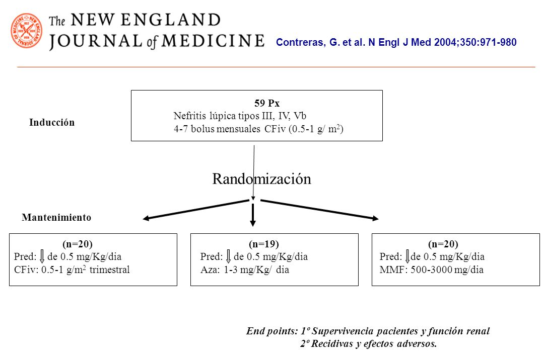 Contreras, G. et al. N Engl J Med 2004;350:971-980 59 Px Nefritis lúpica tipos III, IV, Vb 4-7 bolus mensuales CFiv (0.5-1 g/ m 2 ) Randomización (n=2