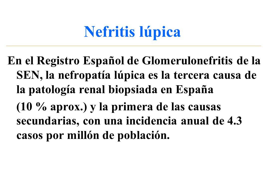 Nefritis lúpica En el Registro Español de Glomerulonefritis de la SEN, la nefropatía lúpica es la tercera causa de la patología renal biopsiada en Esp