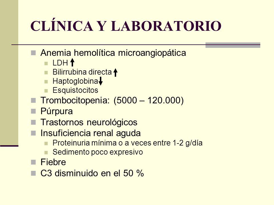 CLÍNICA Y LABORATORIO Anemia hemolítica microangiopática LDH Bilirrubina directa Haptoglobina Esquistocitos Trombocitopenia: (5000 – 120.000) Púrpura