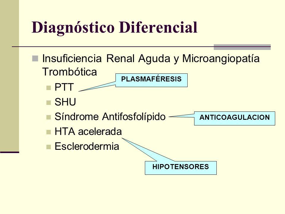 Diagnóstico Diferencial Insuficiencia Renal Aguda y Microangiopatía Trombótica PTT SHU Síndrome Antifosfolípido HTA acelerada Esclerodermia PLASMAFÉRE