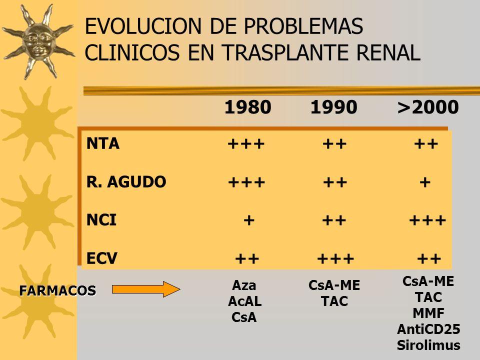EVOLUCION DE PROBLEMAS CLINICOS EN TRASPLANTE RENAL 1980 1990 >2000 NTA +++ ++ ++ R. AGUDO +++ ++ + NCI + ++ +++ ECV ++ +++ ++ NTA +++ ++ ++ R. AGUDO