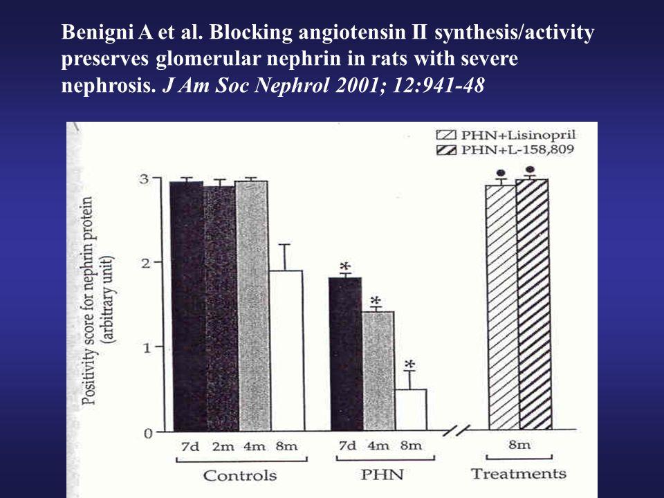 RENOPROTECCION POR INHIBICION DEL SISTEMA RENINA-ANGIOTENSINA (SRA) Y EFECTO ANTIPROTEINURICO - Estrecha correlación entre la reducción de proteinuria inducida por IECA/ARA y el efecto renoprotector de estos fármacos - El efecto antiproteinúrico de la inhibición del SRA se observa ya en las primeras semanas/meses de tratamiento - La cuantía de la PROTEINURIA es un excelente marcador de la efectividad renoprotectora de la inhibición del SRA