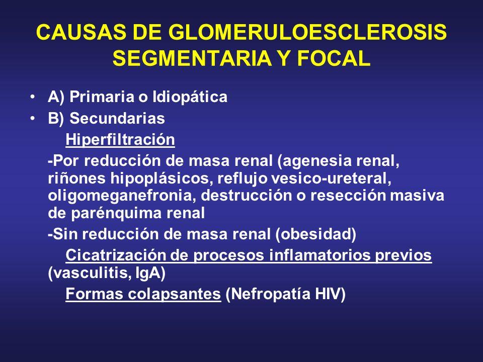 CAUSAS DE GLOMERULOESCLEROSIS SEGMENTARIA Y FOCAL A) Primaria o Idiopática B) Secundarias Hiperfiltración -Por reducción de masa renal (agenesia renal