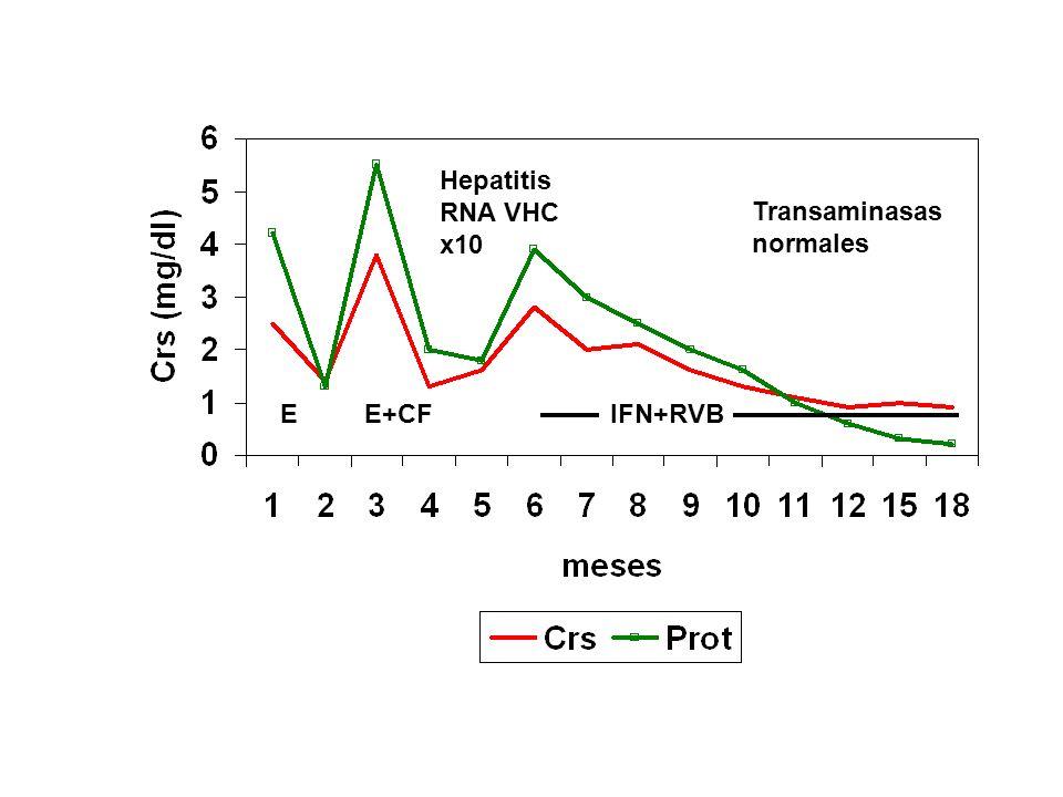 GNMP idiopática-Tratamiento En todos los casos, IECA, ARB o los dos en combinación (Efecto antiproteinúrico y renoprotector) Si proteinuria > 3.5 g /24 h pese a IECA/ARB Niños Adultos Esteroides (6-12 meses) Esteroides Aspirina+dipiridamol (12 m) Casos agresivos (IR rápidamente progresiva, semilunas...): Esteroides dosis altas, ¿ciclofosfamida i.v.?