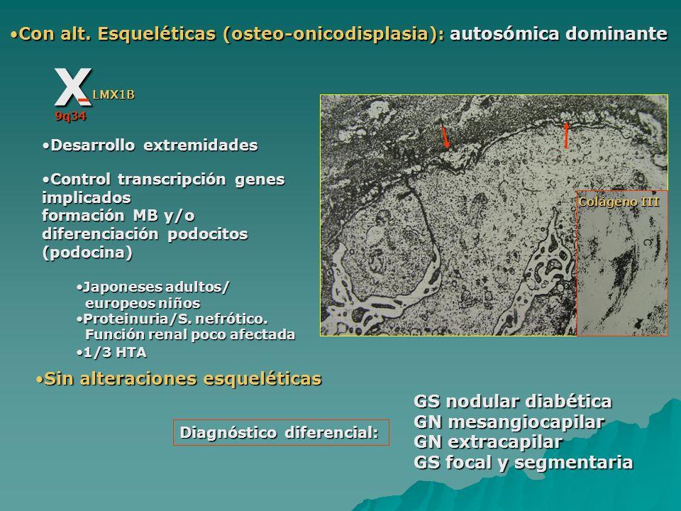 Con alt. Esqueléticas (osteo-onicodisplasia): autosómica dominanteCon alt. Esqueléticas (osteo-onicodisplasia): autosómica dominante X 9q34 LMX1B Desa