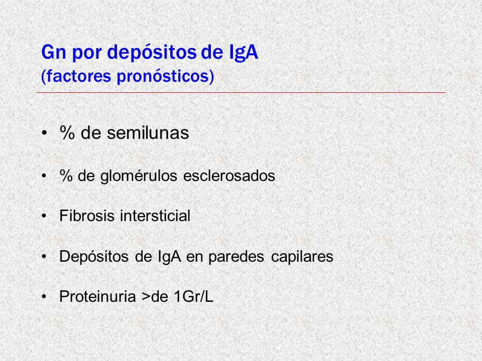 Gn por depósitos de IgA (factores pronósticos) % de semilunas % de glomérulos esclerosados Fibrosis intersticial Depósitos de IgA en paredes capilares