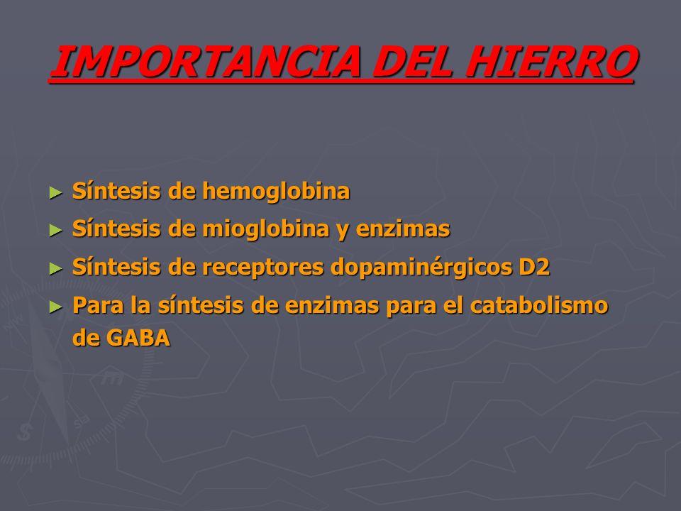 IMPORTANCIA DEL HIERRO Síntesis de hemoglobina Síntesis de hemoglobina Síntesis de mioglobina y enzimas Síntesis de mioglobina y enzimas Síntesis de r