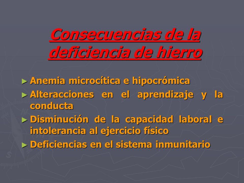 Consecuencias de la deficiencia de hierro Anemia microcítica e hipocrómica Anemia microcítica e hipocrómica Alteracciones en el aprendizaje y la condu