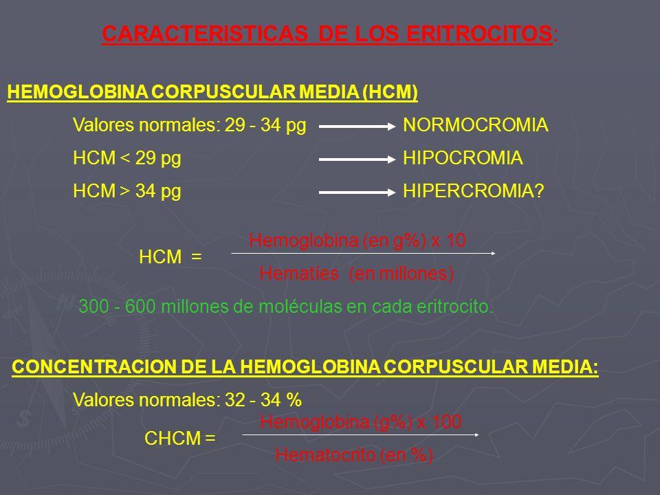CARACTERISTICAS DE LOS ERITROCITOS: HEMOGLOBINA CORPUSCULAR MEDIA (HCM) Valores normales: 29 - 34 pg NORMOCROMIA HCM < 29 pgHIPOCROMIA HCM > 34 pgHIPE