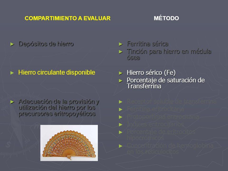 Depósitos de hierro Depósitos de hierro Hierro circulante disponible Adecuación de la provisión y utilización del hierro por los precursores eritropoy
