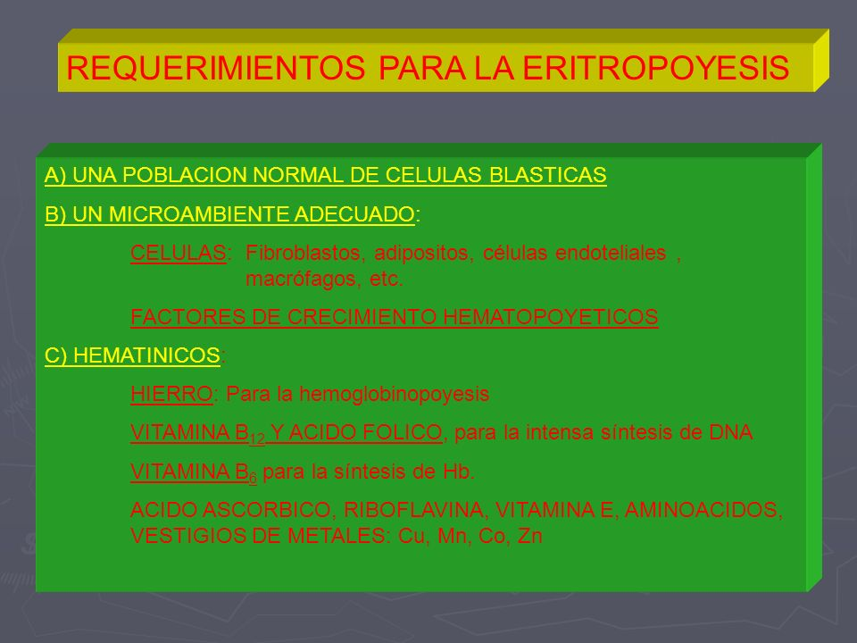 REQUERIMIENTOS PARA LA ERITROPOYESIS A) UNA POBLACION NORMAL DE CELULAS BLASTICAS B) UN MICROAMBIENTE ADECUADO: CELULAS: Fibroblastos, adipositos, cél