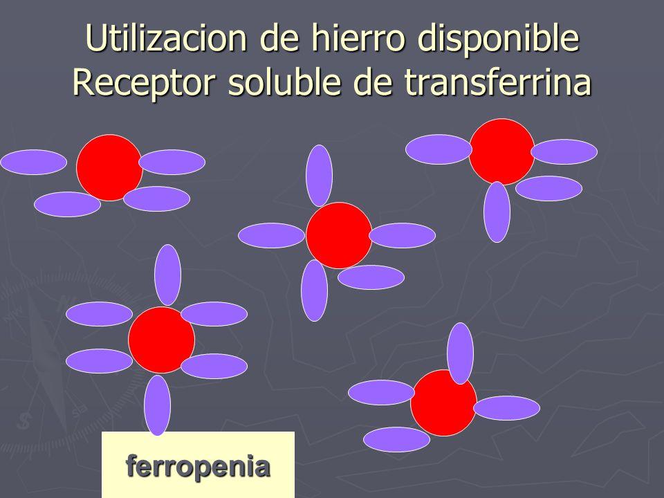 ferropenia