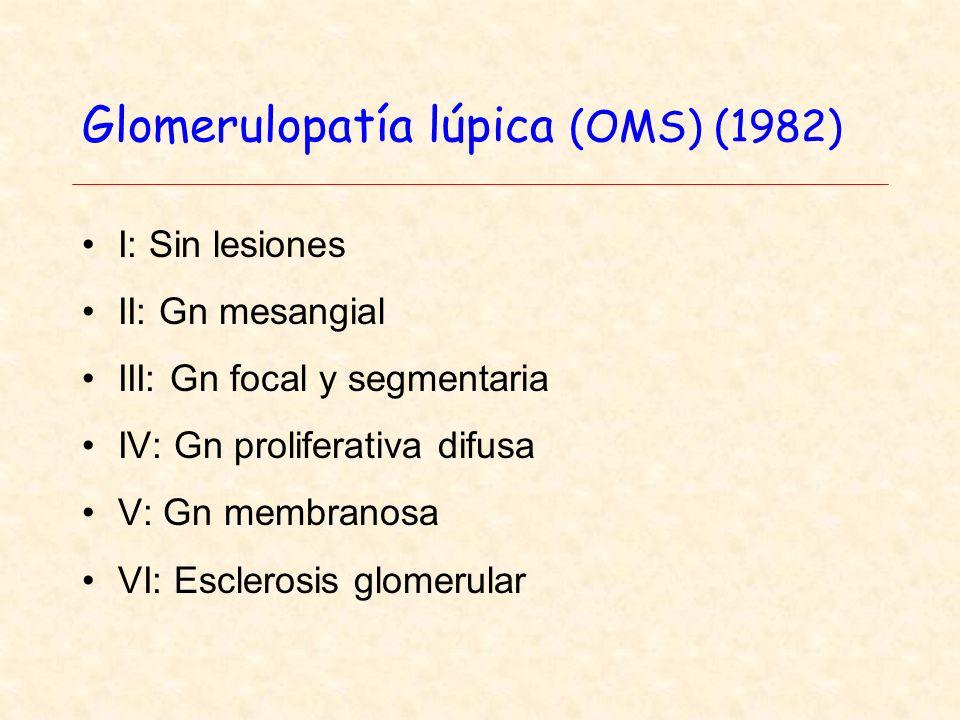 Glomerulopatía lúpica (OMS) (1982) I: Sin lesiones II: Gn mesangial III: Gn focal y segmentaria IV: Gn proliferativa difusa V: Gn membranosa VI: Esclerosis glomerular