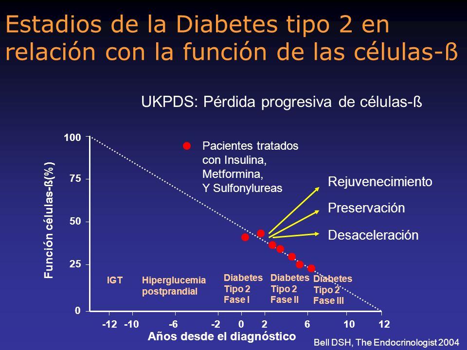 Estadios de la Diabetes tipo 2 en relación con la función de las células-ß 100 75 50 25 0 -12-10-6-20261012 UKPDS: Pérdida progresiva de células-ß Pac