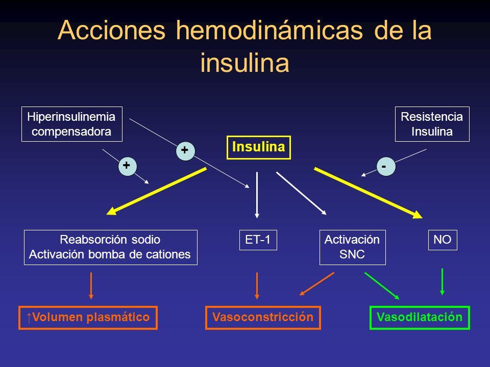 Acciones hemodinámicas de la insulina Hiperinsulinemia compensadora Insulina Resistencia Insulina Reabsorción sodio Activación bomba de cationes ET-1A