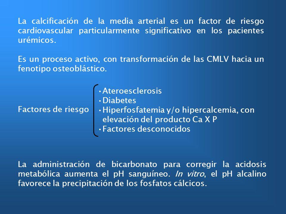 La calcificación de la media arterial es un factor de riesgo cardiovascular particularmente significativo en los pacientes urémicos. Es un proceso act
