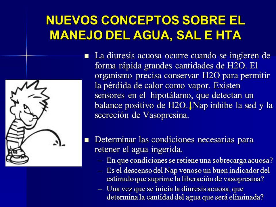NUEVOS CONCEPTOS SOBRE EL MANEJO DEL AGUA, SAL E HTA La diuresis acuosa ocurre cuando se ingieren de forma rápida grandes cantidades de H2O. El organi