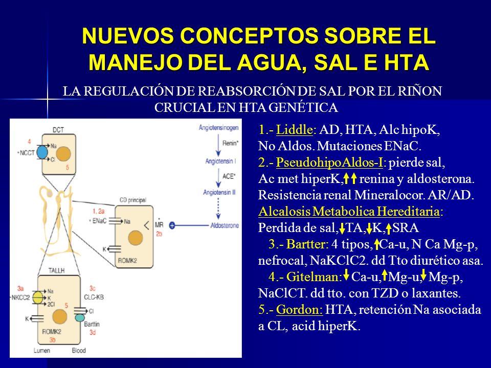 NUEVOS CONCEPTOS SOBRE EL MANEJO DEL AGUA, SAL E HTA 1.- Liddle: AD, HTA, Alc hipoK, No Aldos. Mutaciones ENaC. 2.- PseudohipoAldos-I: pierde sal, Ac