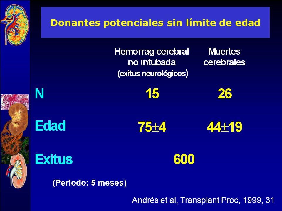 38.2% Memoria de actividades de la ONT 2004 D>60a: 38.2%