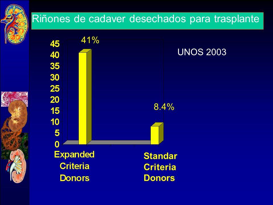 Donantes mayores 60 años y riñones desechados en España 8 18 25 30 90 91 92 93 94 95 96 97 98 99 % de riñones desechados % donantes > 60 años 2004: 24