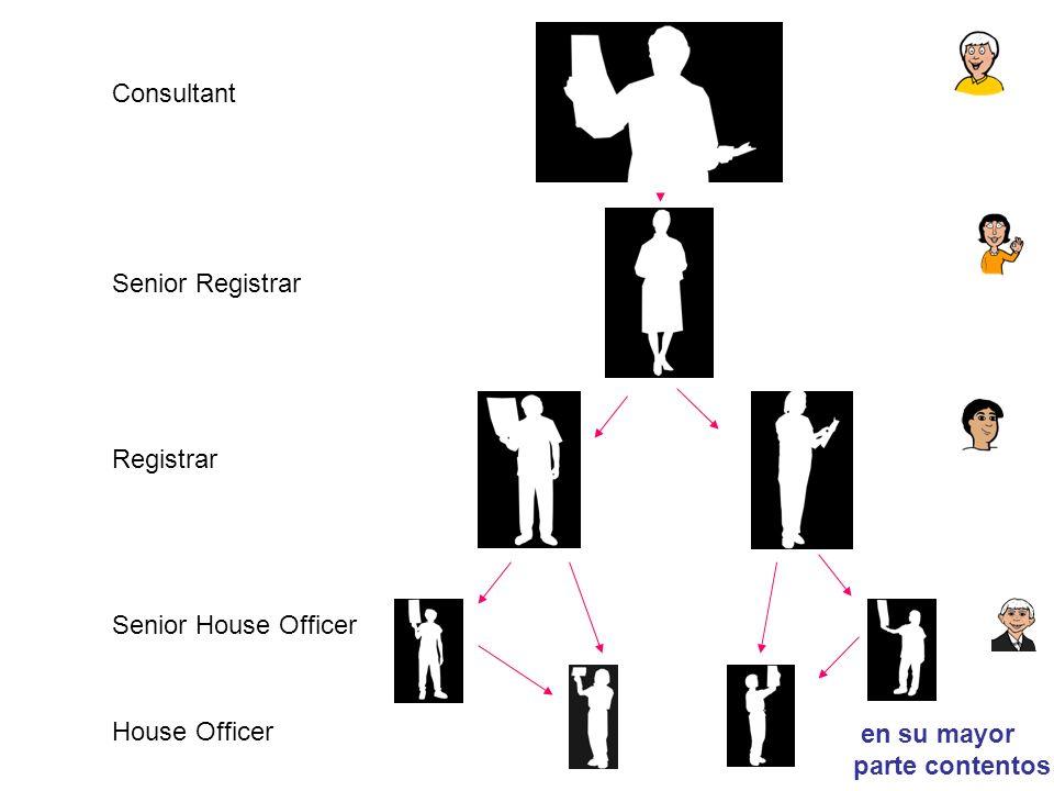 Consultant Senior Registrar Registrar Senior House Officer House Officer en su mayor parte contentos