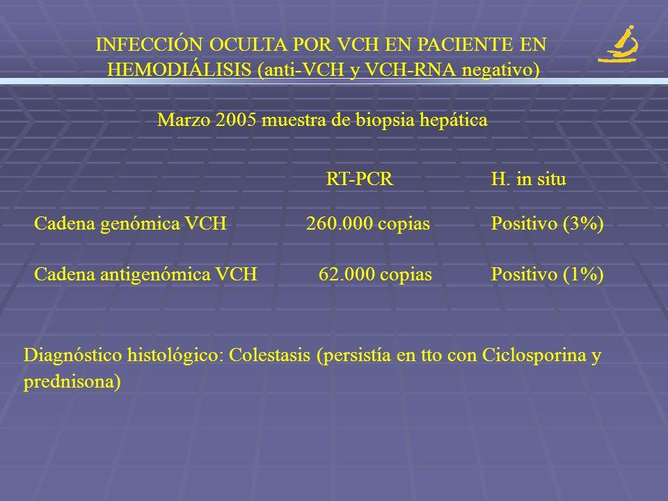 INFECCIÓN OCULTA POR VCH EN PACIENTE EN HEMODIÁLISIS (anti-VCH y VCH-RNA negativo) Marzo 2005 muestra de biopsia hepática RT-PCR H. in situ Cadena gen