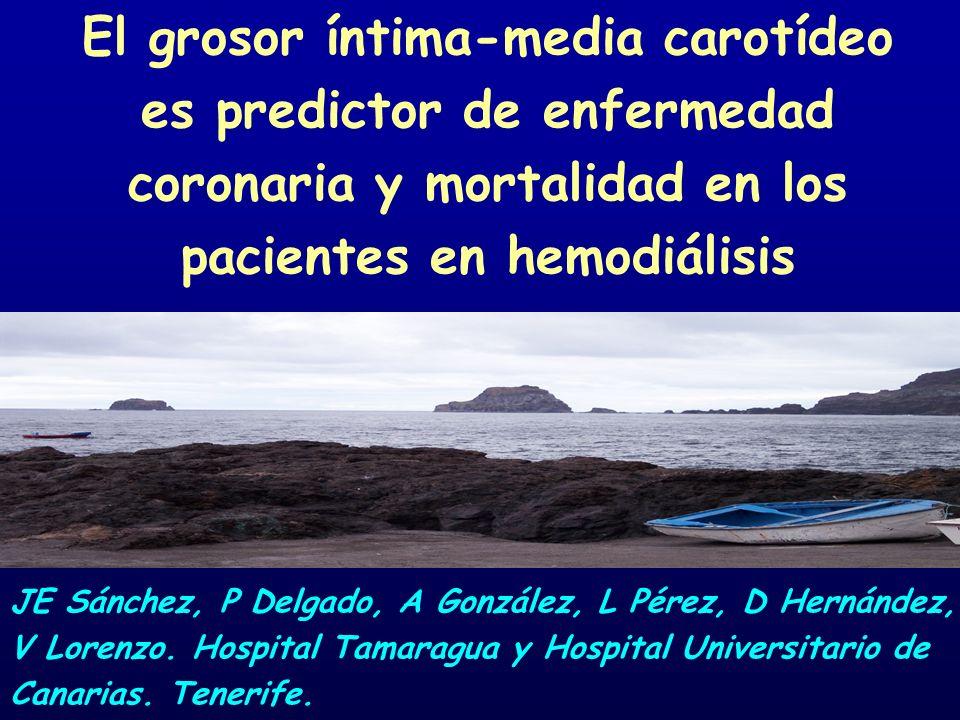 El grosor íntima-media carotídeo es predictor de enfermedad coronaria y mortalidad en los pacientes en hemodiálisis JE Sánchez, P Delgado, A González,