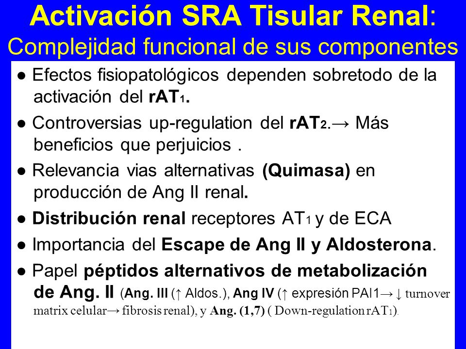 Activación SRA Tisular Renal: Complejidad funcional de sus componentes Efectos fisiopatológicos dependen sobretodo de la activación del rAT 1. Controv