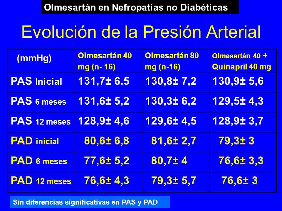 Evolución de la Presión Arterial (mmHg) Olmesartán 40 mg (n- 16) Olmesartán 80 mg (n-16) Olmesartán 40 + Quinapril 40 mg PAS Inicial 131,7± 6.5130,8±