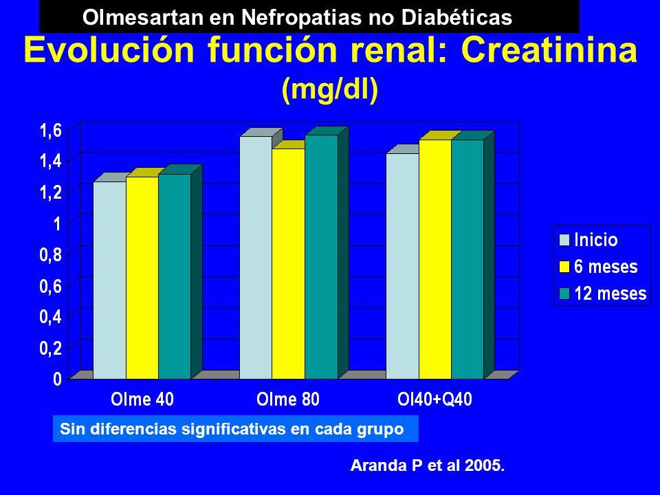 Evolución función renal: Creatinina (mg/dl) Sin diferencias significativas en cada grupo Aranda P et al 2005. Olmesartan en Nefropatias no Diabéticas