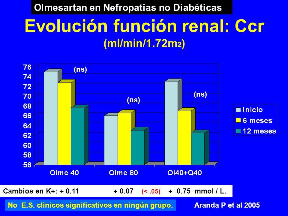 Evolución función renal: Ccr (ml/min/1.72m 2 ) Cambios en K+: + 0.11 + 0.07 (<.05) + 0.75 mmol / L. Aranda P et al 2005 Olmesartan en Nefropatias no D