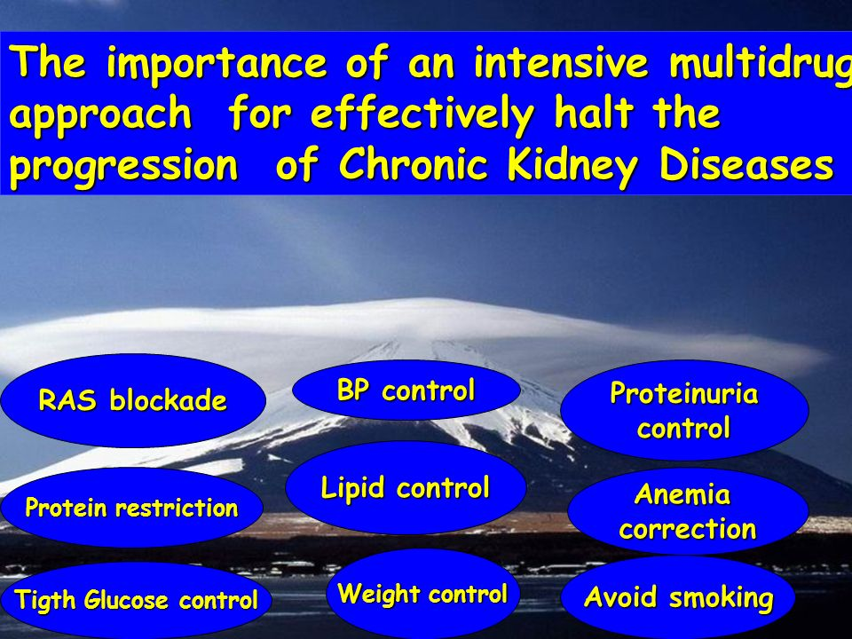 The importance of an intensive multidrug approach for effectively halt the progression of Chronic Kidney Diseases BP control RAS blockade Anemiacorrec