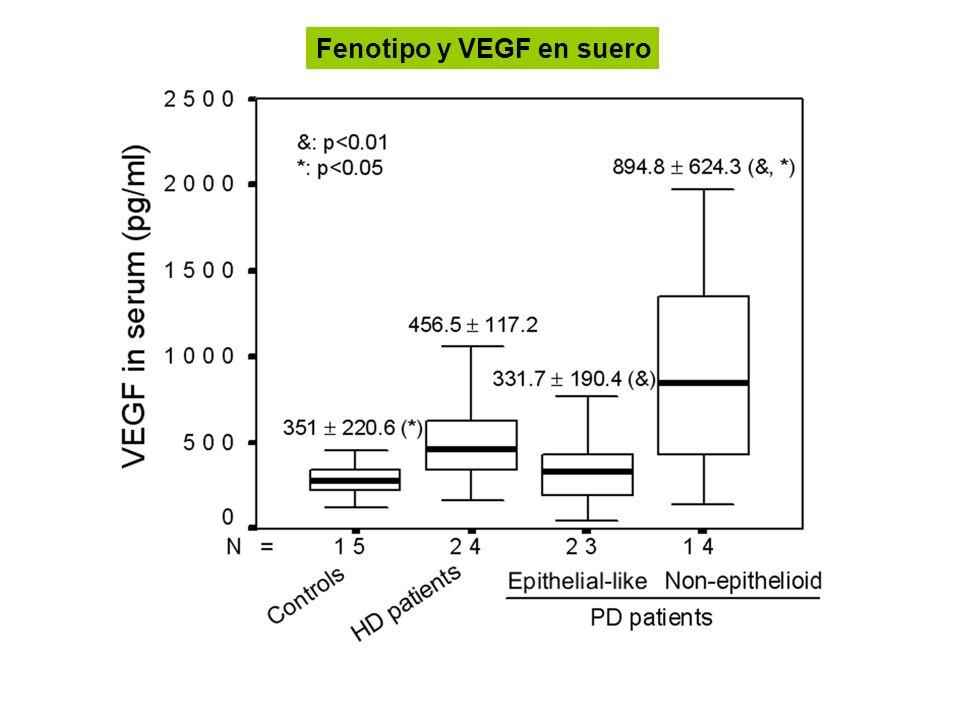 Fenotipo y VEGF en suero