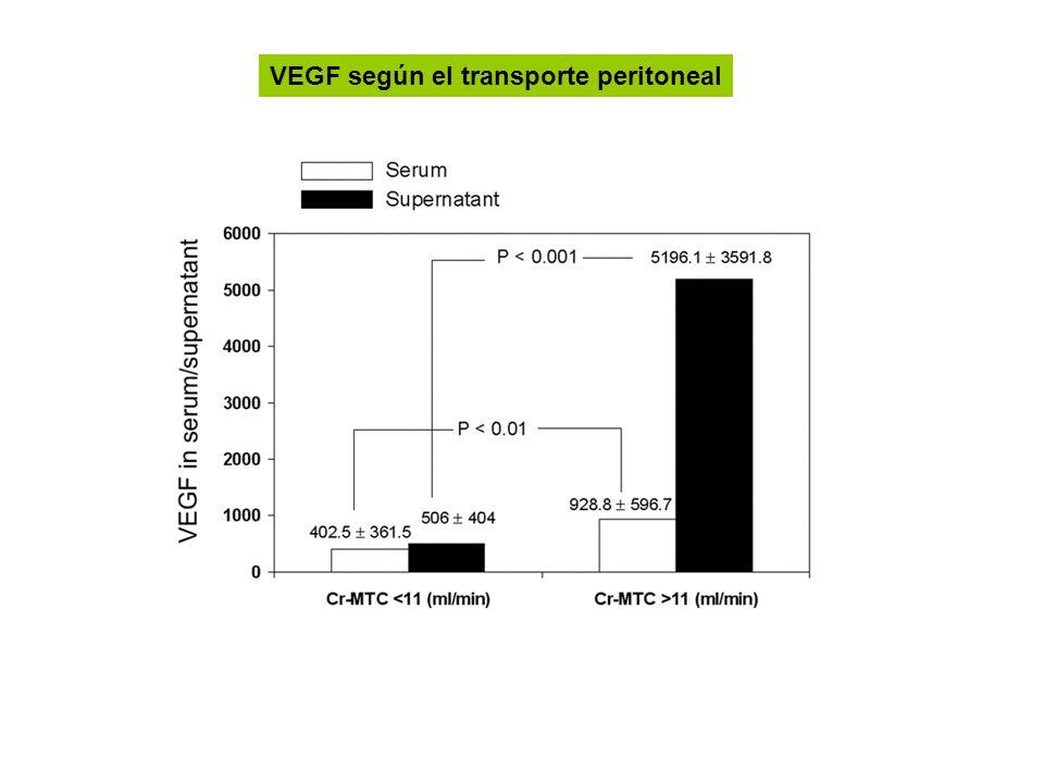 VEGF según el transporte peritoneal
