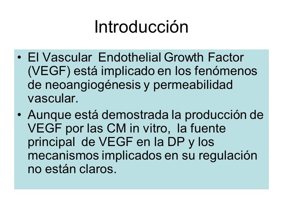 Introducción El Vascular Endothelial Growth Factor (VEGF) está implicado en los fenómenos de neoangiogénesis y permeabilidad vascular. Aunque está dem