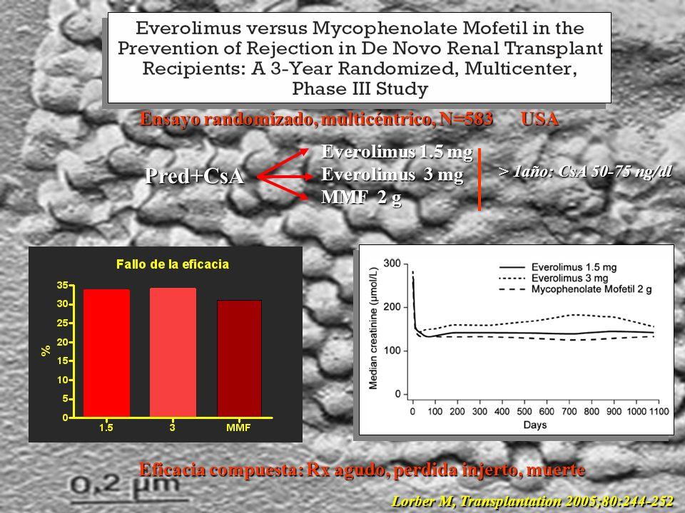 Eficacia compuesta: Rx agudo, perdida injerto, muerte Lorber M, Transplantation 2005;80:244-252 Ensayo randomizado, multicéntrico, N=583 USA Pred+CsA