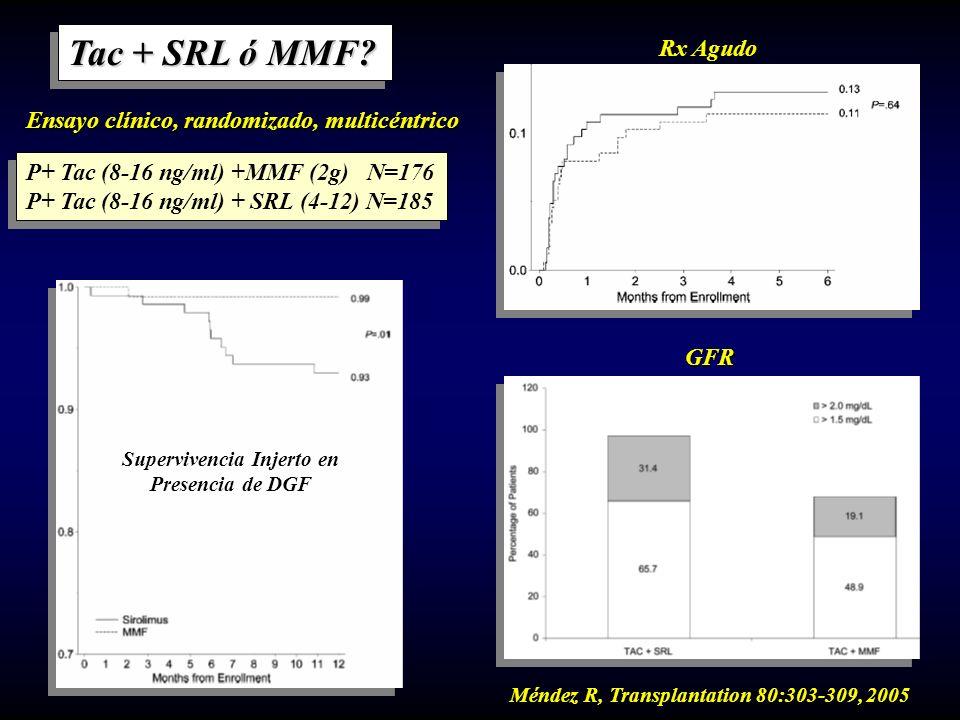 Tac + SRL ó MMF? P+ Tac (8-16 ng/ml) +MMF (2g) N=176 P+ Tac (8-16 ng/ml) + SRL (4-12) N=185 P+ Tac (8-16 ng/ml) +MMF (2g) N=176 P+ Tac (8-16 ng/ml) +