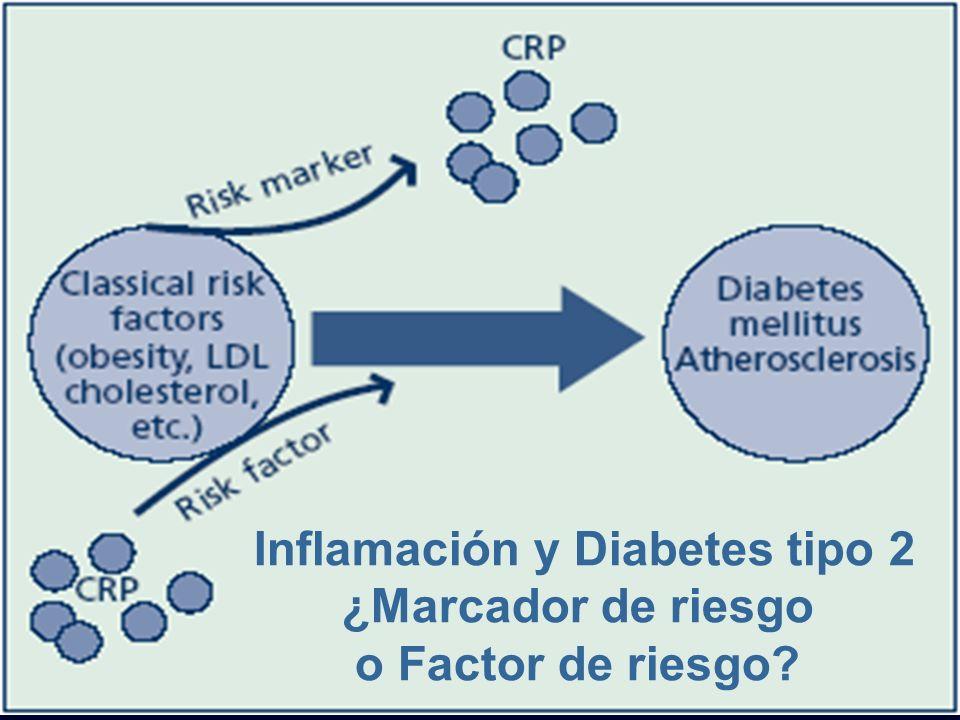 Inflamación y Diabetes tipo 2 ¿Marcador de riesgo o Factor de riesgo?