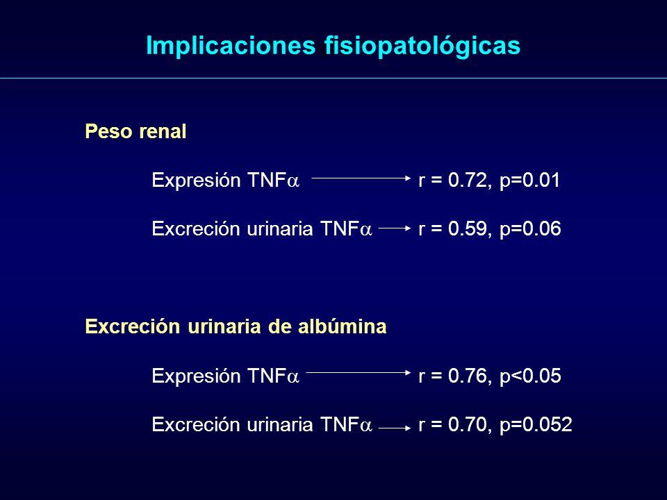 Figure 1. Implicaciones fisiopatológicas Peso renal Expresión TNF r = 0.72, p=0.01 Excreción urinaria TNF r = 0.59, p=0.06 Excreción urinaria de albúm