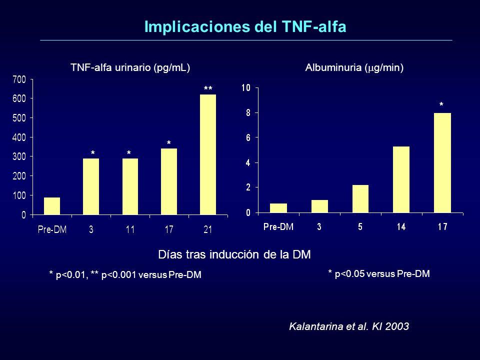 * p<0.01, ** p<0.001 versus Pre-DM ** * ** Días tras inducción de la DM TNF-alfa urinario (pg/mL) Kalantarina et al. KI 2003 Implicaciones del TNF-alf