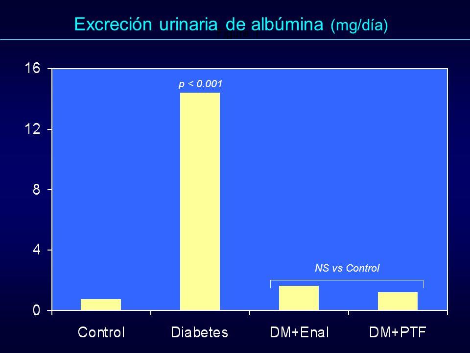 Figure 1. p < 0.001 Excreción urinaria de albúmina (mg/día) NS vs Control