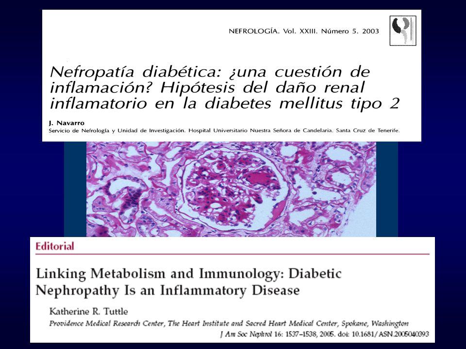 Duration of diabetesp < 0.001 C-reactive proteinp < 0.001 Urinary TNF- p < 0.001 Glycated hemoglobinp < 0.05 R 2 = 0.73, p < 0.001 Navarro et al.