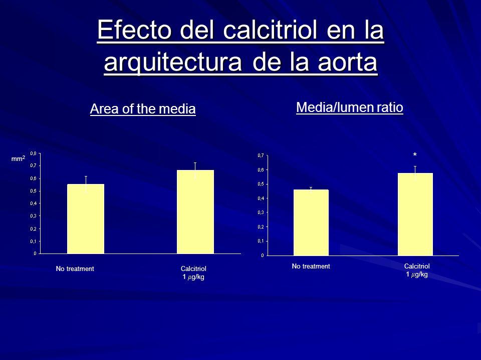 Efecto del calcitriol en la arquitectura de la aorta No treatment mm 2 Area of the media Media/lumen ratio * Calcitriol 1 g/kg Calcitriol 1 g/kg